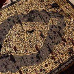 Krwawy Koran