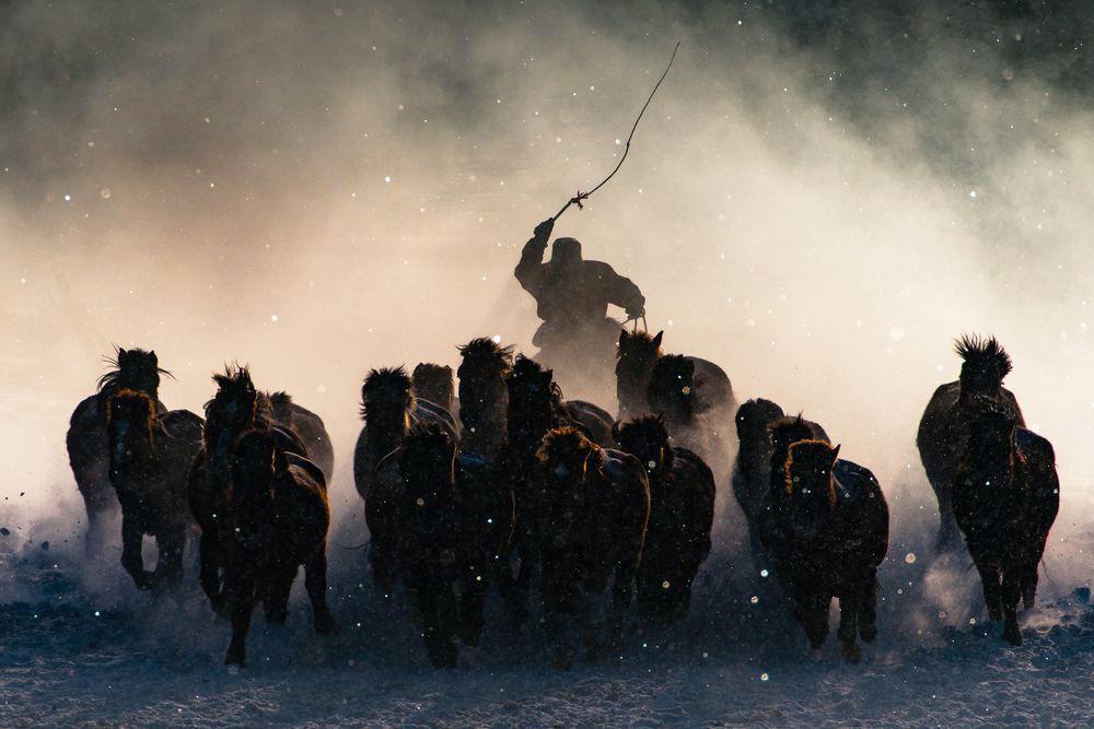 Mongolska horda. (fot. Anthony Lau)