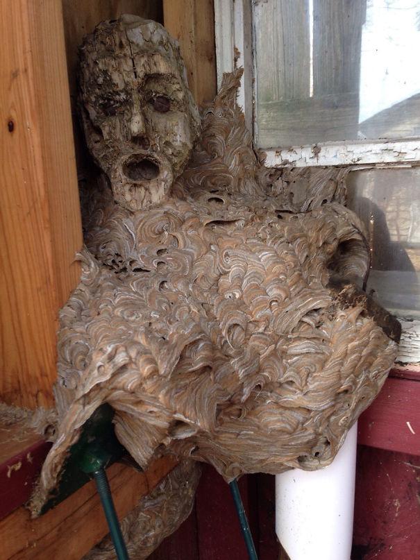 Tutaj nieco inne gniazdo, tym razem zrobione na bazie drewnianej rzeźby.