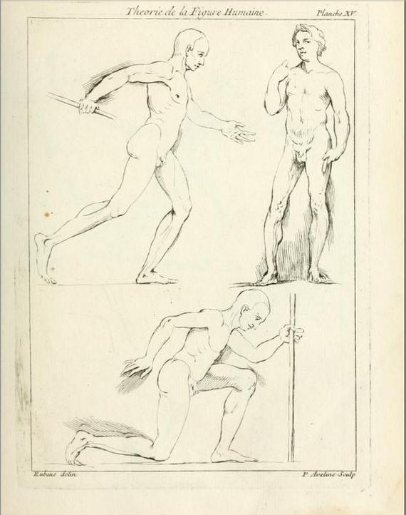 Peter Paul Rubens, Théorie de la Figure Humaine, 1773