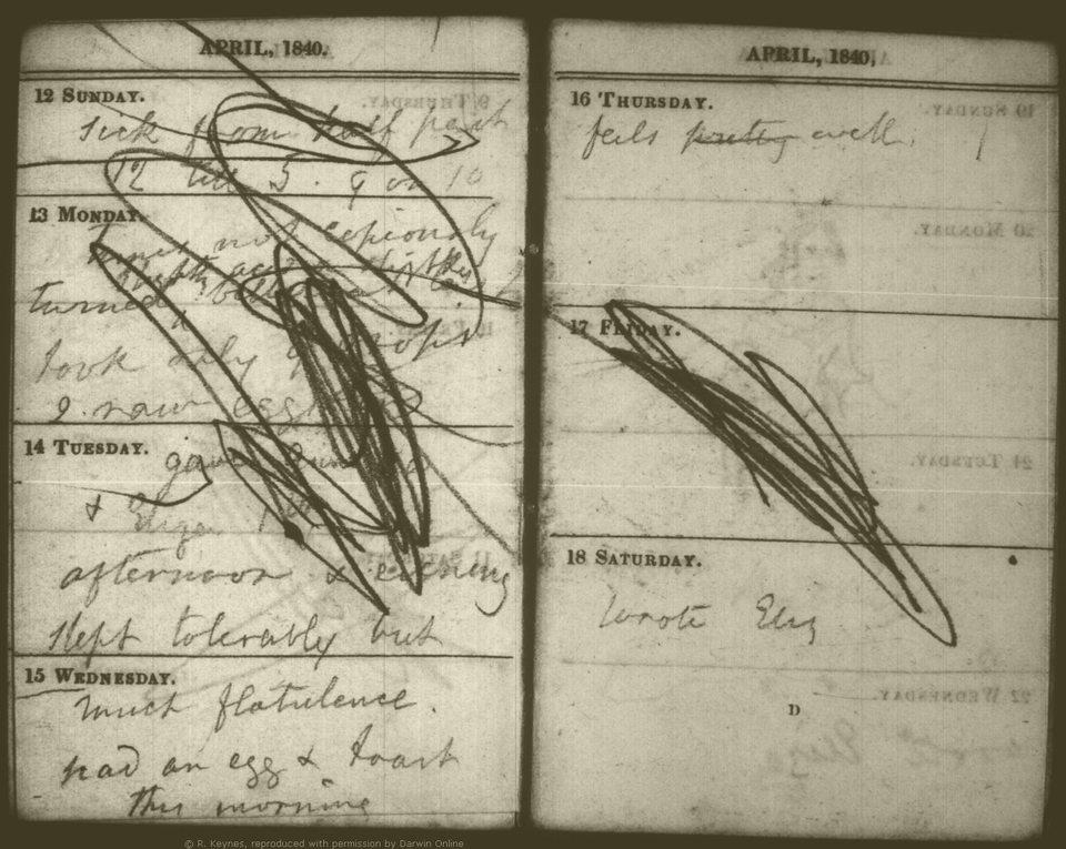 Zapiski Emmy Darwin, upiększone przez jedno z jej dzieci. (Darwin Heirlooms Trust)