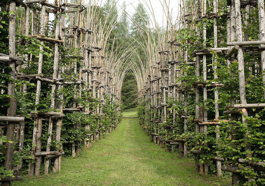 cattedrale-vegetale-tree-cathedral-giuliano-mauri-1[1]