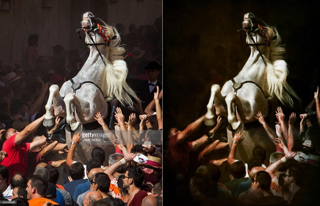 Narowisty koń. (fot. Jaime Reina)