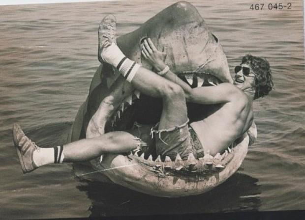 Rekin - Szczęki