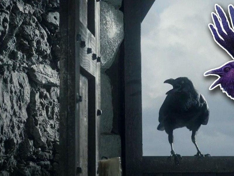 """Kruki z """"Gry o tron"""" nie mają żadnych szans"""