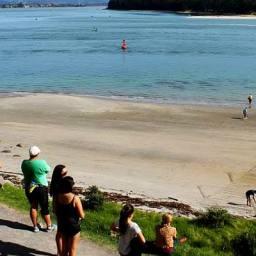 Tak Nowozelandczycy dewastują plażę