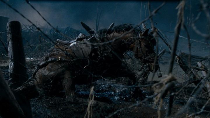 Główny bohater Czasu wojny w potrzasku. Śmierć konia (niekoniecznie tego) na planie nie była nagłaśniana, by nie szargać reputacji wpływowego Stevena Spielberga