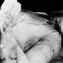 Prawdopodobnie najbardziej uparta ofiara morderstwa w historii [+18]