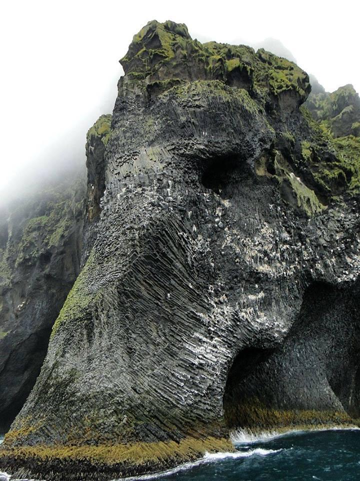 Najstarszy słoń świata.