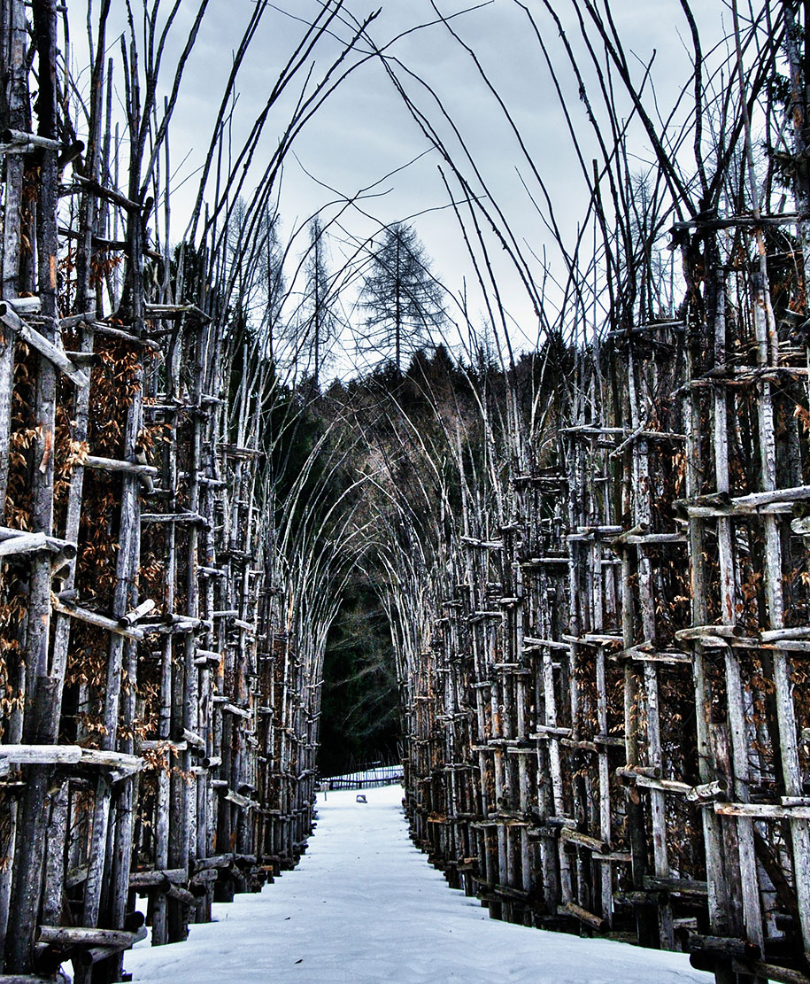 cattedrale-vegetale-tree-cathedral-giuliano-mauri-6[1]