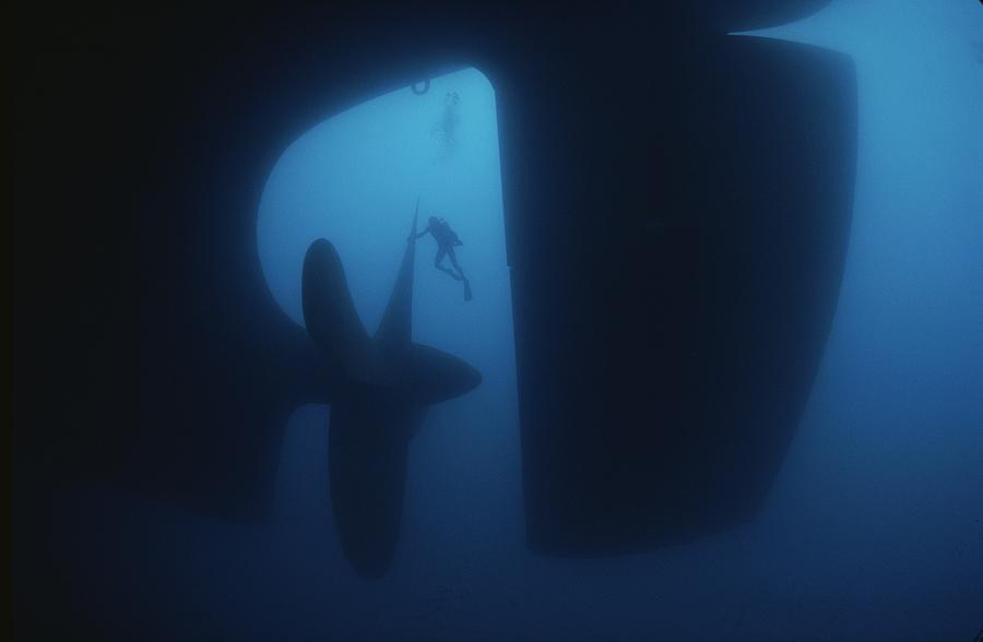 Morski gigant.