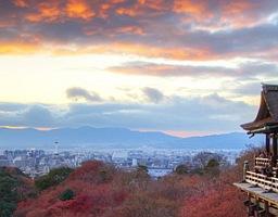 5 naprawdę ciekawych ciekawostek o Japonii
